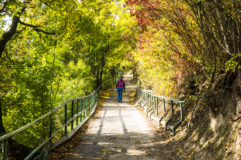 Den Weg gehen in Herbstlandschaft und die Schritte spüren.
